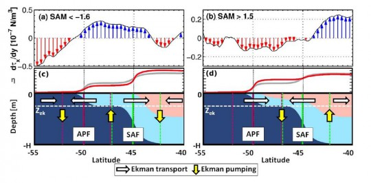 Ekman pumping anomalies during periods of (a) extreme negative and of (b) extreme positive SAM in the Southern Ocean.