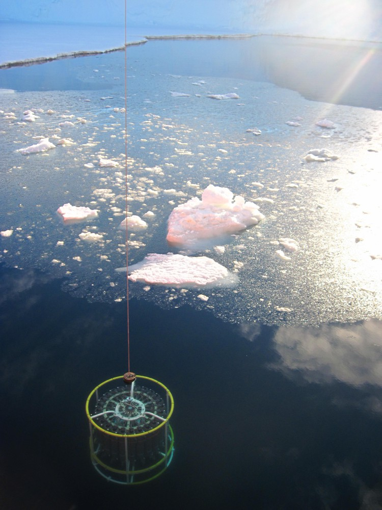 A CTD (conductivity, temperature, depth) being deployed in icy Southern Ocean Seas